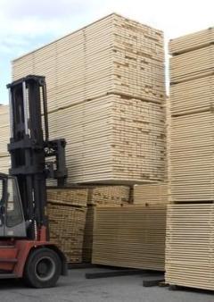 Constructii pe structura din lemn