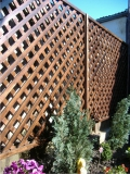 Garduri si pergole - Gard din lemn cu zabrele 3