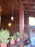 Garduri si pergole  - Pergola din lemn 2